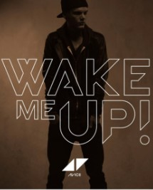 Avicii feat. Aloe Blacc (Wake Me Up)